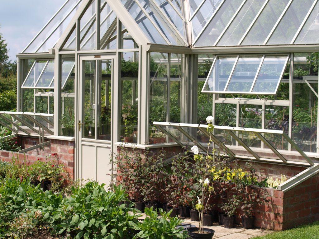 Biologischer Pflanzenschutz im Garten selber machen